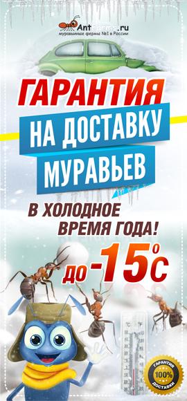 Доставка зимой