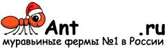 Муравьиные фермы AntFarms.ru - Оренбург